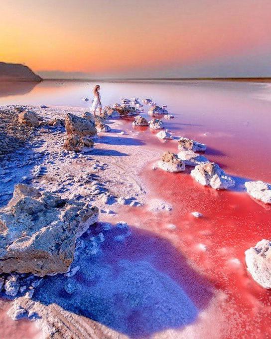 Кояшское озеро Источник: http://krymea.ru/vodoemy/koyashskoe-ozero.html